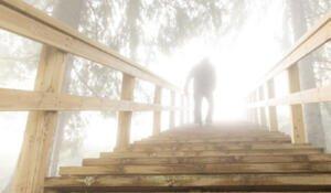 Tahkon portaat