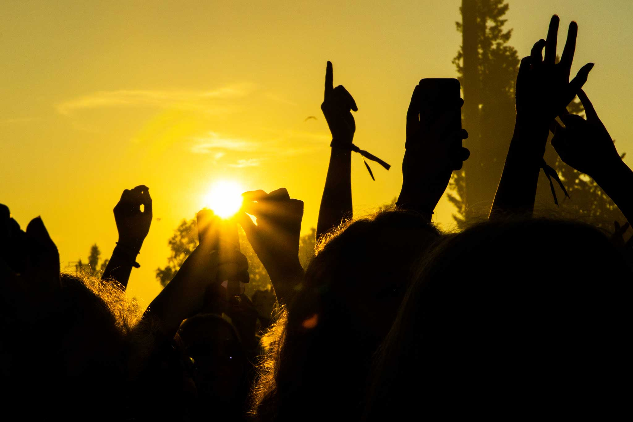 Käsiä konsertissa ilta-auringon valossa