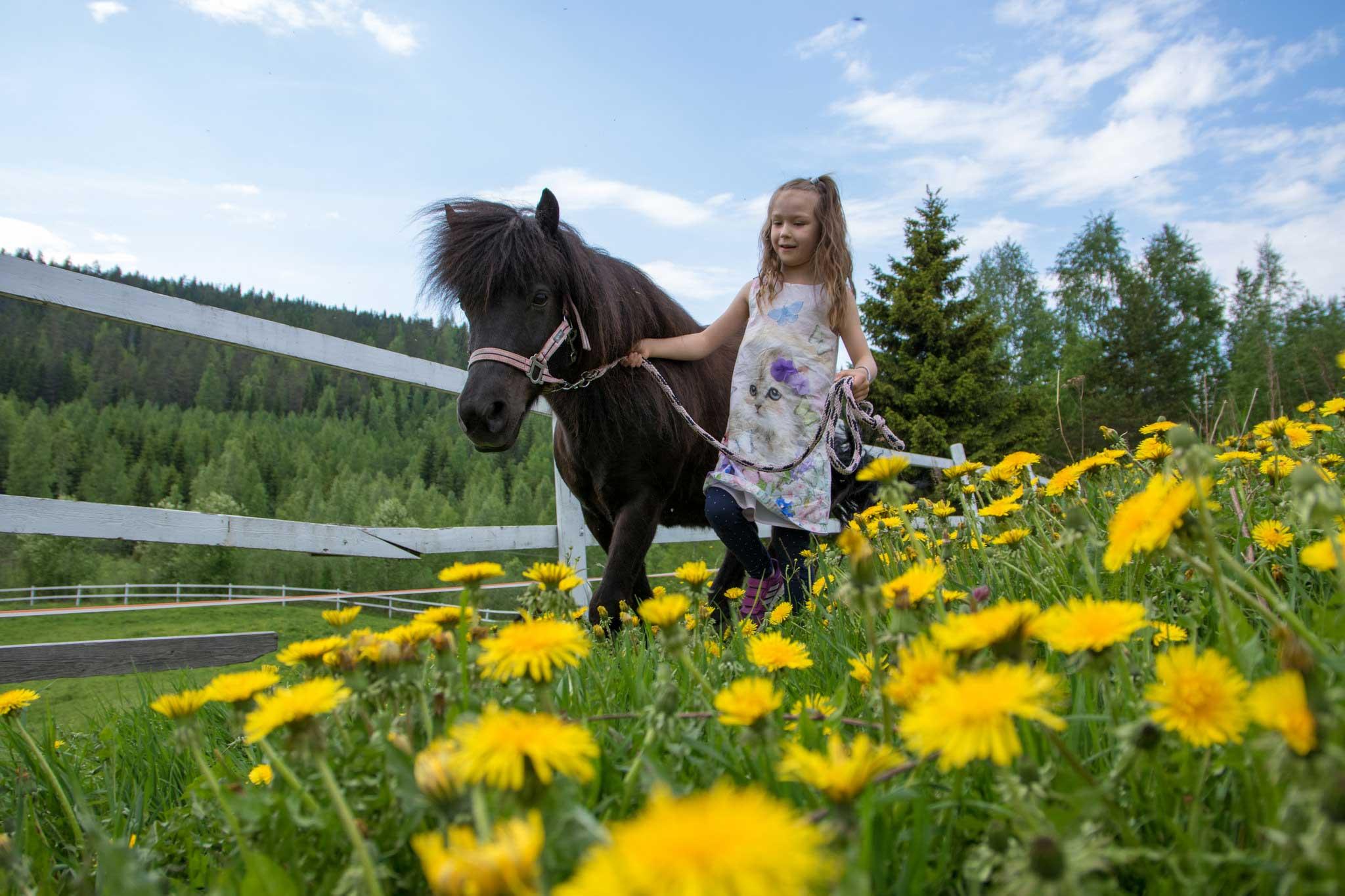 Tyttö ja hevonen Tahkolla