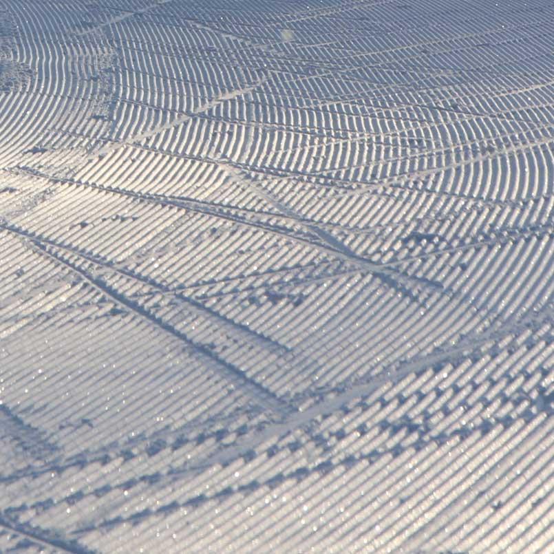 Ski Tracks in Kuopio