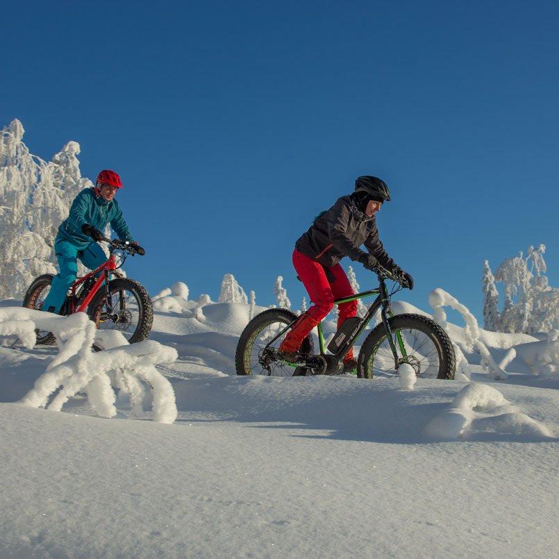 Зимний велопоход на фэтбайке с гидом  в Тахко