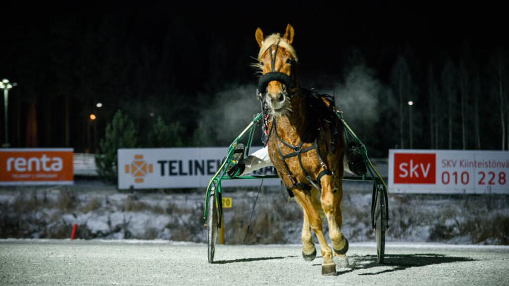 Talvisunnuntain ravit, Winter Monte Meeting